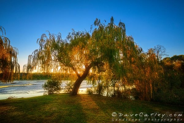 Autumn Sunset 1, Yanchep National Park, Yanchep, Western Australia - Photographic Art