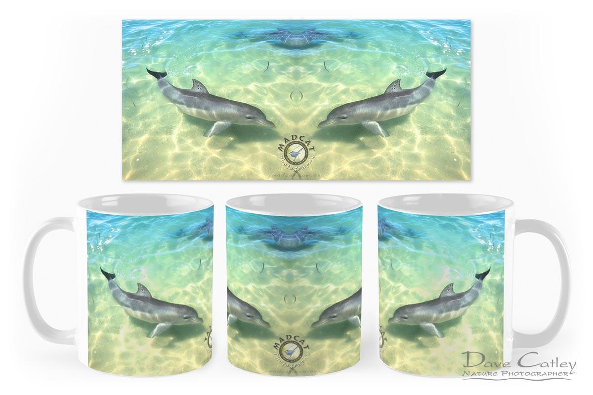 Samu - Baby Dolphin, Monkey Mia, Shark Bay, Western Australia, Wildlife Mug (CCW1.1-V1-MG1)