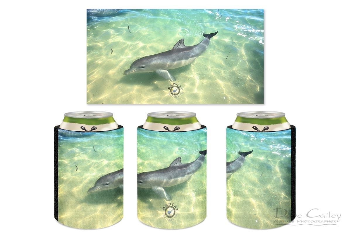 Samu - Baby Dolphin, Monkey Mia, Shark Bay, Western Australia, Wildlife Stubby Holder (CCW1.1-V1-SH1)