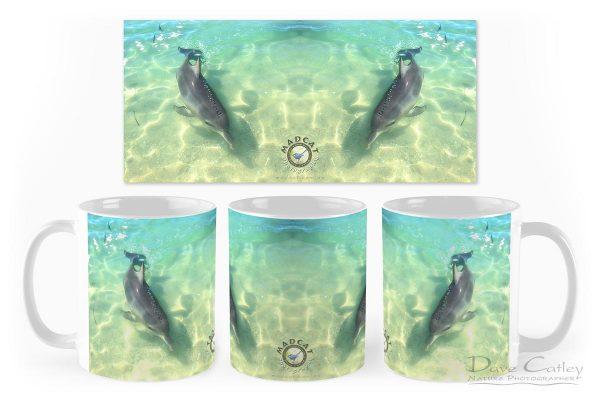 Samu - Baby Dolphin, Monkey Mia, Shark Bay, Western Australia, Wildlife Mug (CCW1.2-V1-MG1)