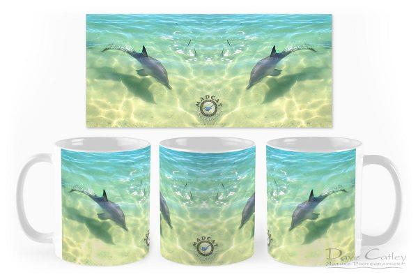 Samu - Baby Dolphin, Monkey Mia, Shark Bay, Western Australia, Wildlife Mug (CCW1.3-V1-MG1)