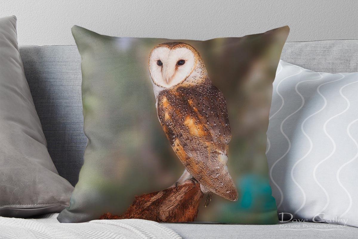 Chips - Barn Owl, Native Animal Rescue, Perth, Western Australia, Wildlife Cushion Cover (NAR1.8-V1-CC1)
