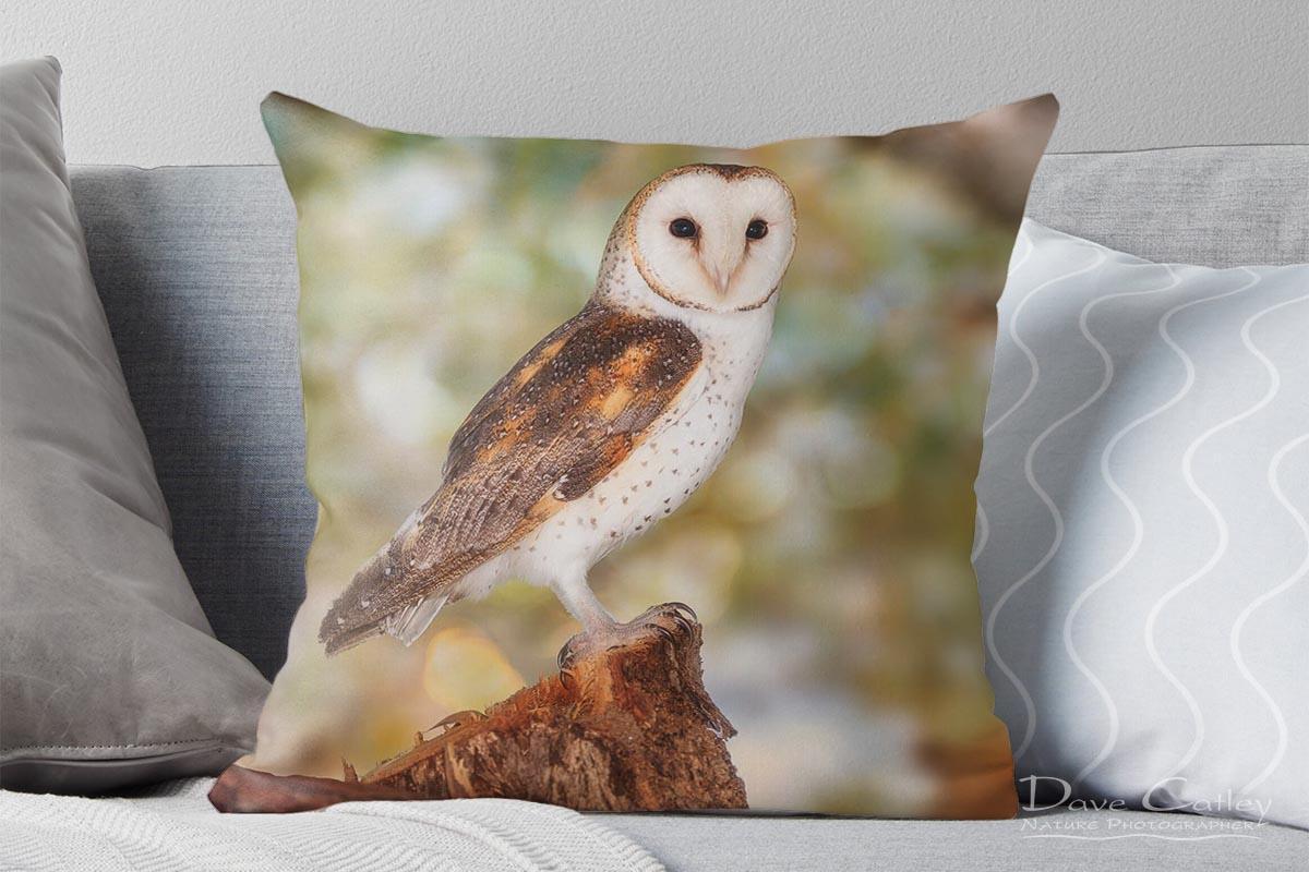 Chips the Owl - Barn Owl, Native Animal Rescue, Perth, Western Australia, Wildlife Cushion Cover (NAR1.9-V2-CC1)