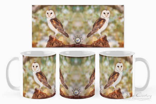 Chips the Owl - Barn Owl, Native Animal Rescue, Perth, Western Australia, Wildlife Mug (NAR1.9-V2-MG1)