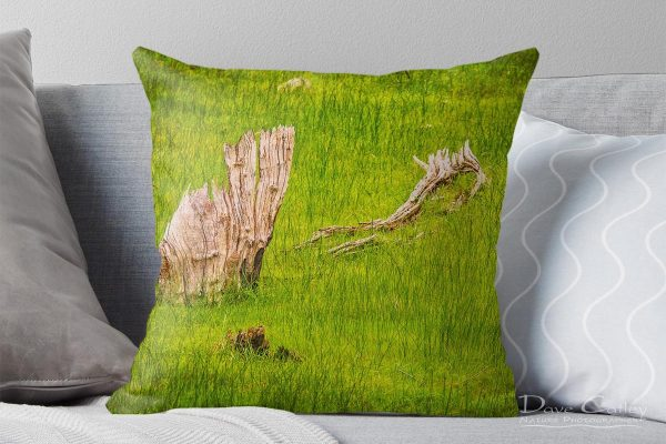 Sailing the Sea of Grass - Bells Rapids, Swan Valley, Perth, Western Australia, Landscape Cushion Cover (BRV1.1-V1-CC1)
