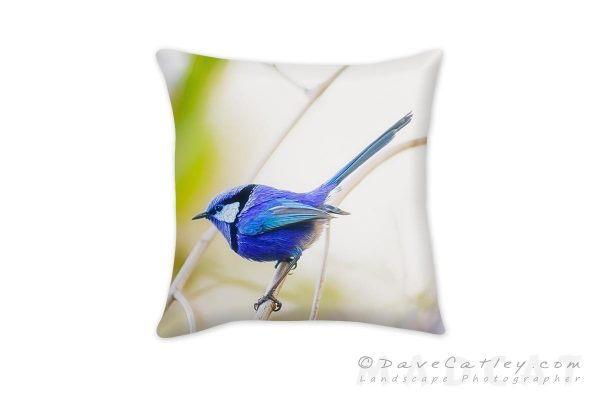 Blue Wren, Bushy Lakes, Margaret River, Western Australia, Cushion Covers (BWB1.1-V2-CC1)