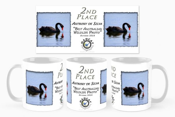 Customised Mugs - Photo Competition, MADCAT Photography, Perth, Western Australia