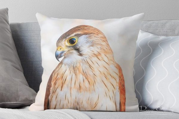 Harriet - Nankeen Kestrel, Native Animal Rescue, Perth, Western Australia, Wildlife Cushion Cover (NAR1.12-V1-CC1)