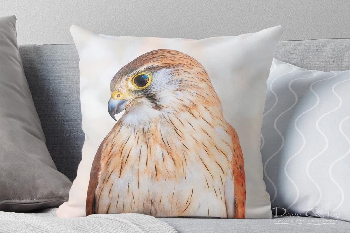Harriet - Nankeen Kestrel, Native Animal Rescue, Perth, Western Australia, Wildlife Cushion Cover (NAR1.12-V1-CC1)