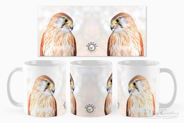 Harriet - Nankeen Kestrel, Native Animal Rescue, Perth, Western Australia, Wildlife Mug (NAR1.12-V1-MG1)