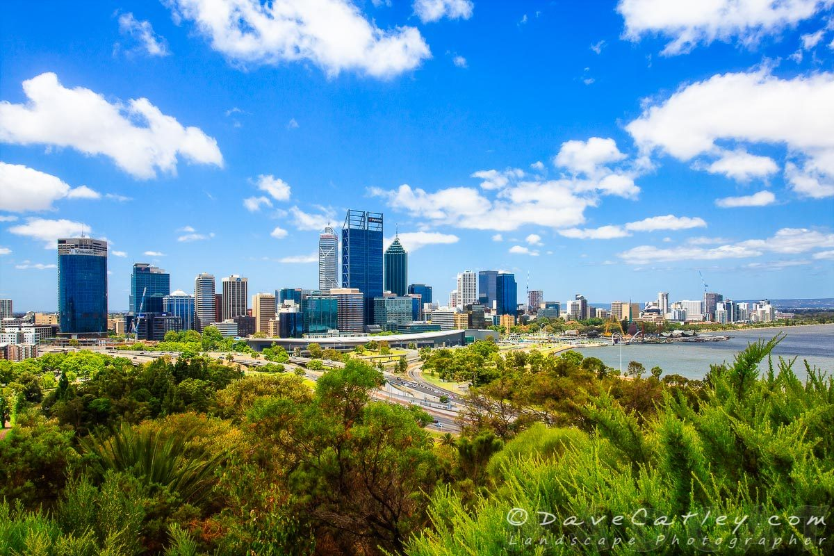 Perth City Skyline from Kings Park, Western Australia - Photographic Art
