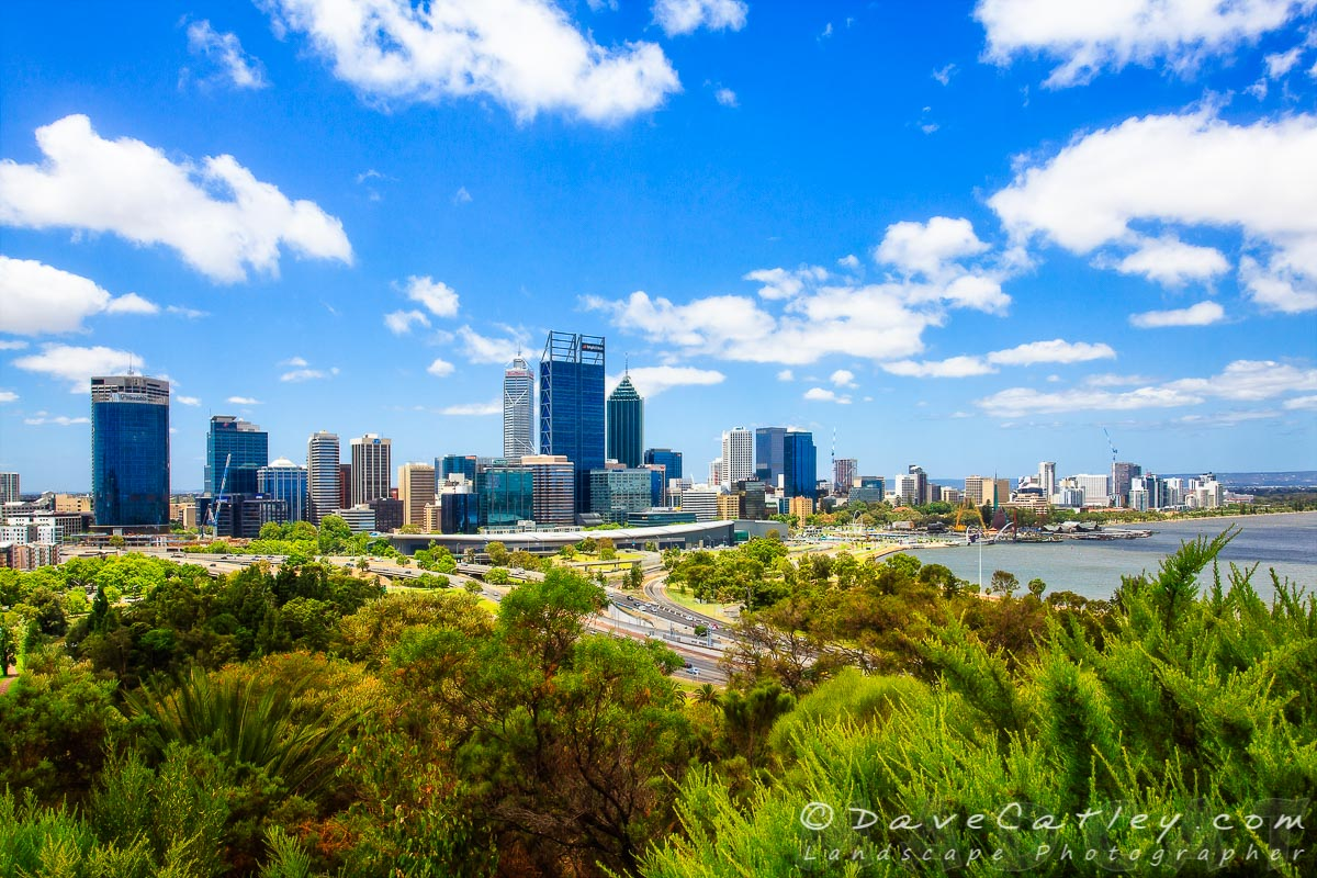Perth City Skyline from Kings Park, Western Australia