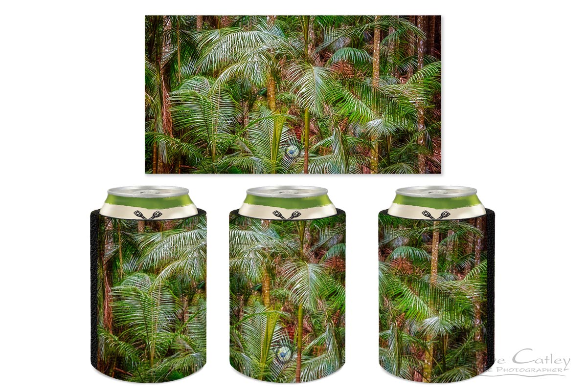 Deep in the Forest - Rainforest, Tamborine Mountain, Tamborine, Queensland, Landscape Stubby Holder (GCR1.1-V1-SH1)