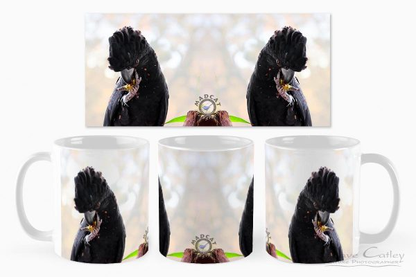 Exploding Nuts - Red Tailed Black Cockatoo, Native Animal Rescue, Perth, Western Australia, Wildlife Mug (NAR1.17-V1-MG1)