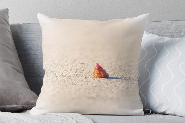 Simplicity - Sea Snail Shell, Carnac Island, Perth, Western Australia, Wildlife Cushion Cover (CIS1.1-V1-CC1)