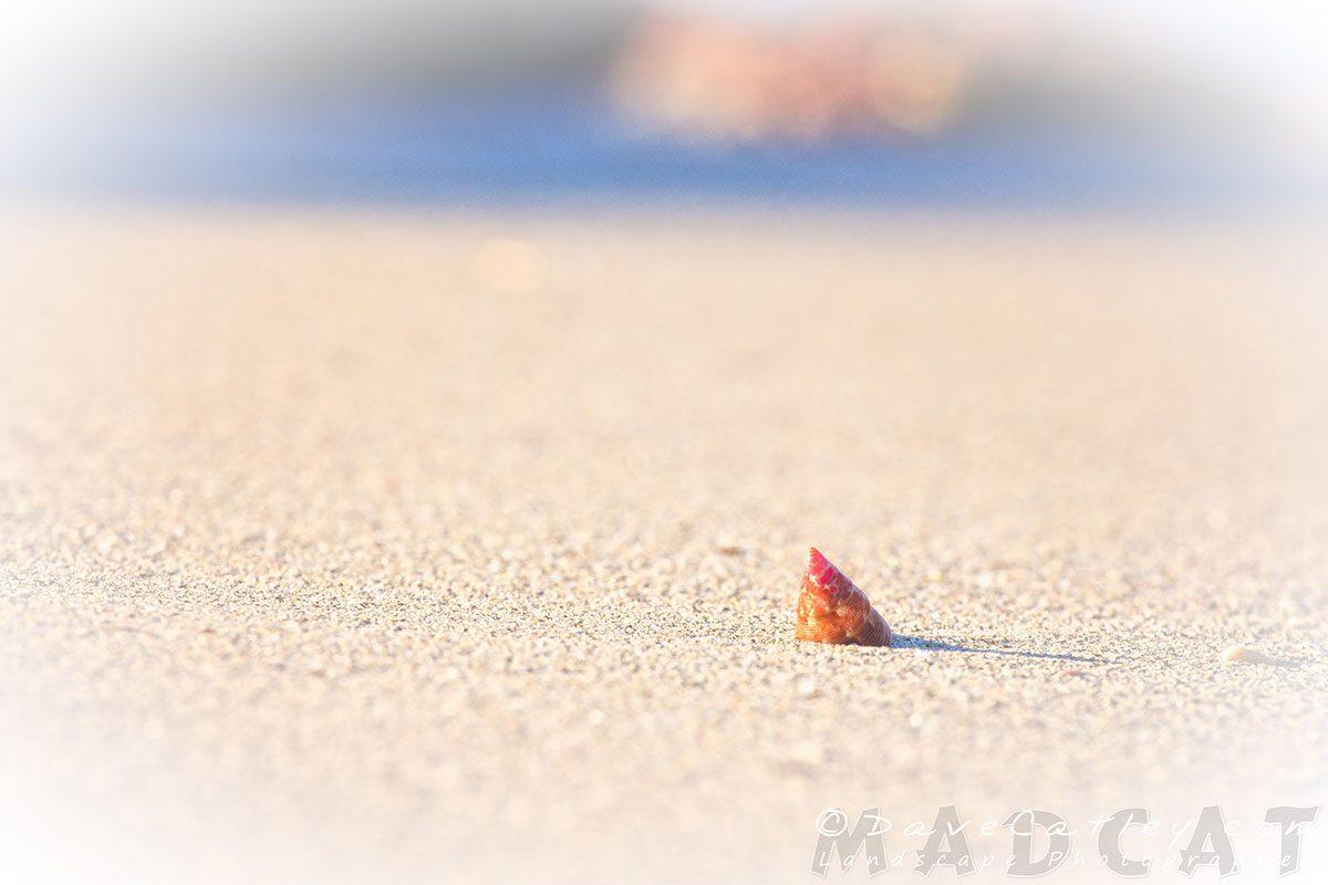 Simplicity, Carnac Island, Perth Photographic Art