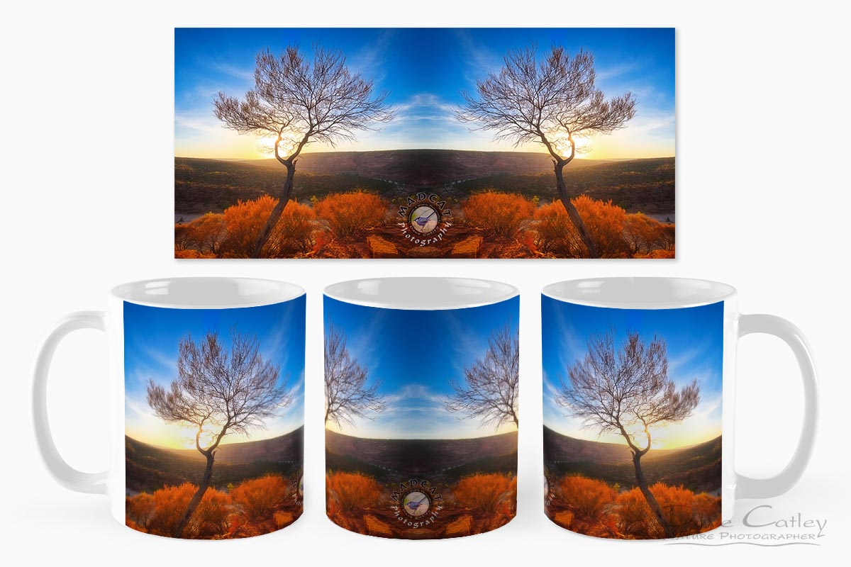 Dead River Tree - Sunset, Murchison River, Kalbarri, Western Australia, Landscape Mug (KNP1.1-V1-MG1)