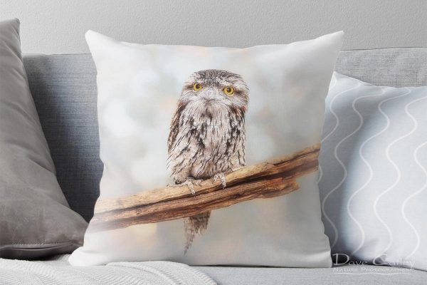 Max - Tawny Frogmouth, Native Animal Rescue, Perth, Western Australia, Wildlife Cushion Cover (NAR1.2-V1-CC1)