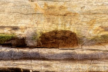 Photo Processing – Waves on Wood Using Textures